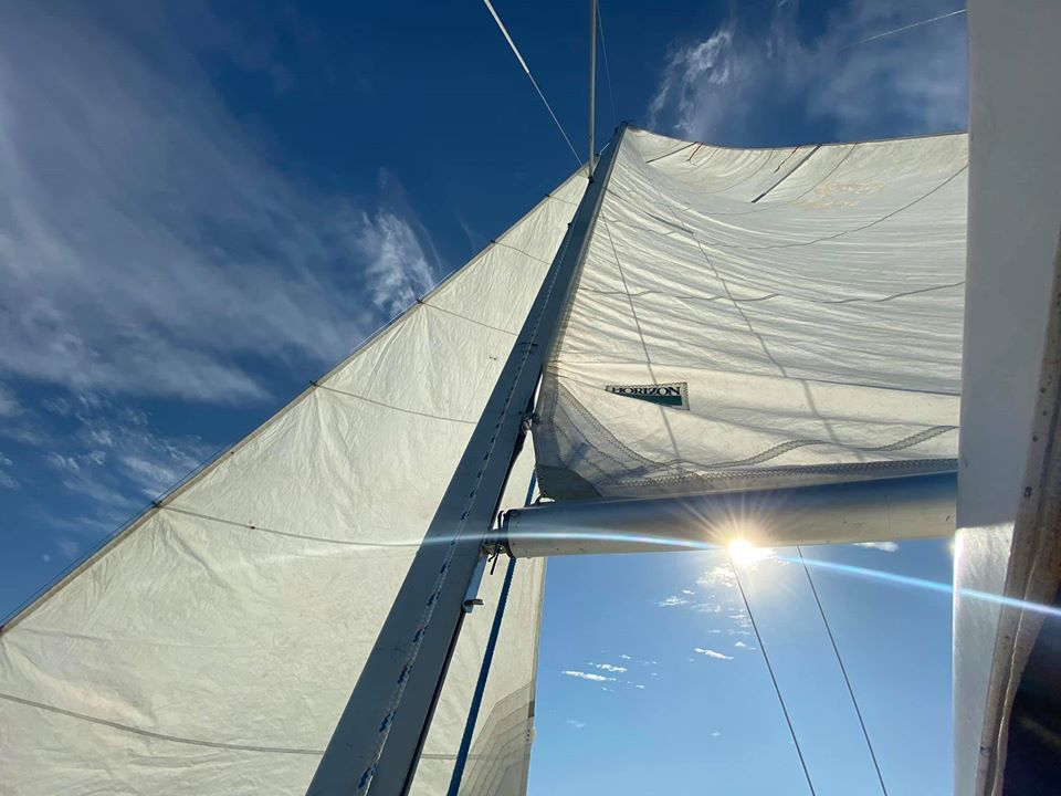 Day Sail with Sailing Orlando